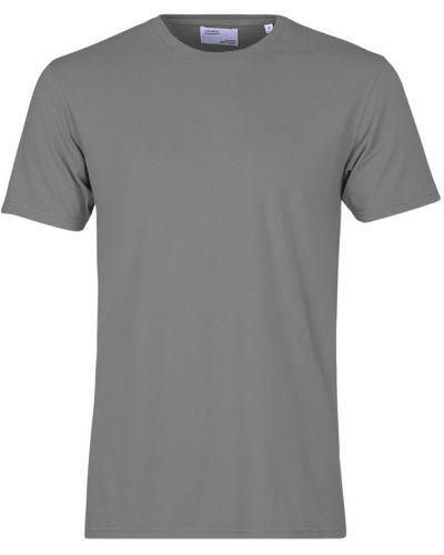 Szara t-shirt Colorful Standard