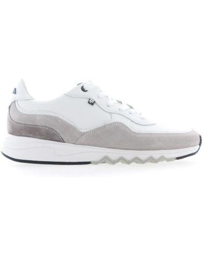Białe sneakersy srebrne Floris Van Bommel