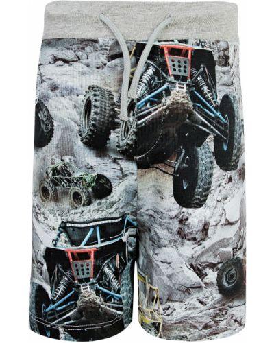Серые хлопковые шорты Molo