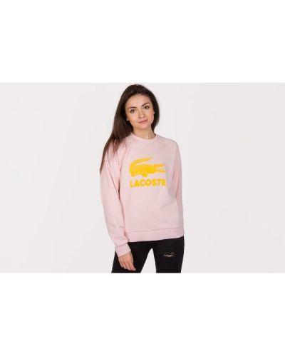 Różowa bluza bawełniana Lacoste