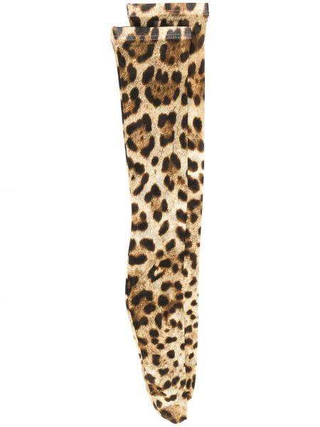 Brązowe skarpety z printem Dolce And Gabbana