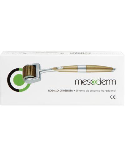 Мезороллер Mesoderm