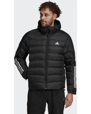 Куртка с капюшоном утепленная легкая Adidas