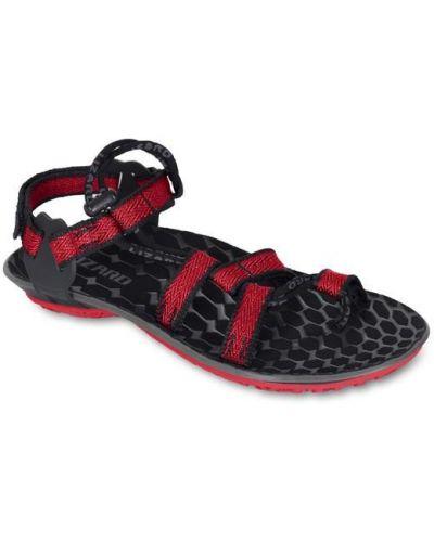 Красные сандалии анатомические Lizard