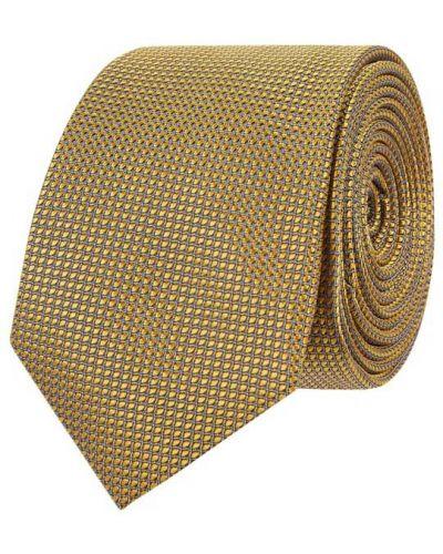 Złoty krawat Willen