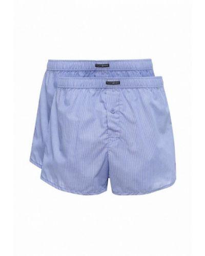Голубые шорты Torro