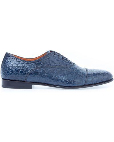 Классические туфли на шнуровке из кожи крокодила Santoni