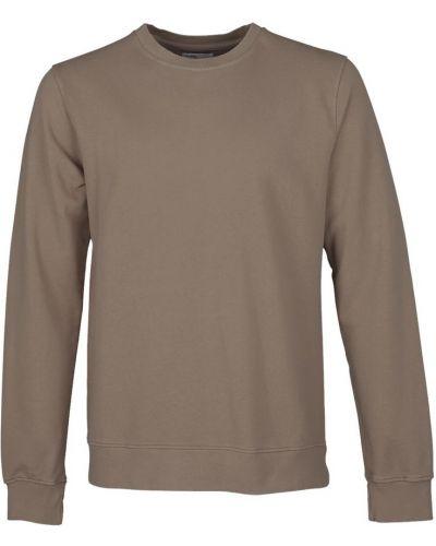 Szara bluza dresowa Colorful Standard