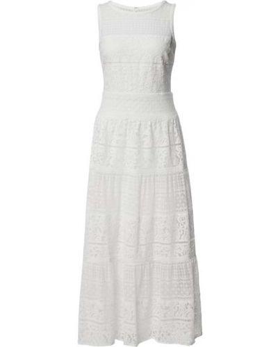 Biała sukienka midi koronkowa bawełniana Lauren Ralph Lauren