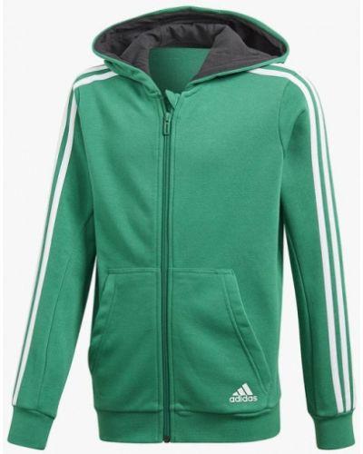 Толстовка зеленый Adidas