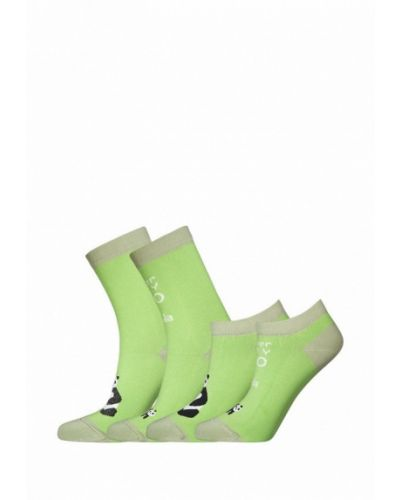 Зеленый носки набор Bb Socks