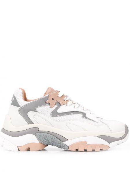 Кожаные кроссовки белый на шнуровке Ash