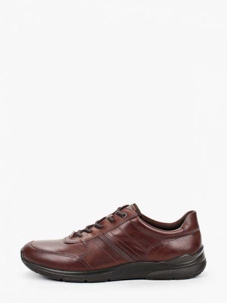 Коричневые кожаные кроссовки Ecco