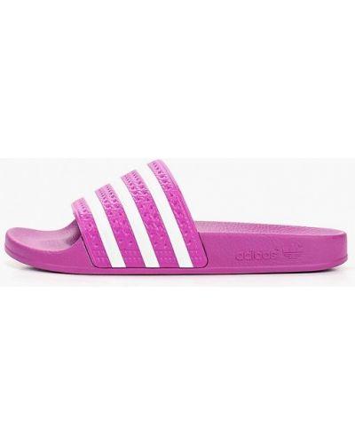 Сланцы итальянские фиолетовый Adidas Originals
