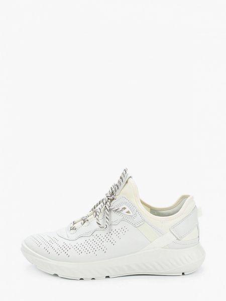Белые кроссовки из натуральной кожи Ecco