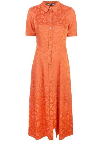 Приталенное классическое платье миди на пуговицах Alexa Chung