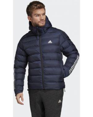 Облегченная утепленная куртка с нашивками Adidas