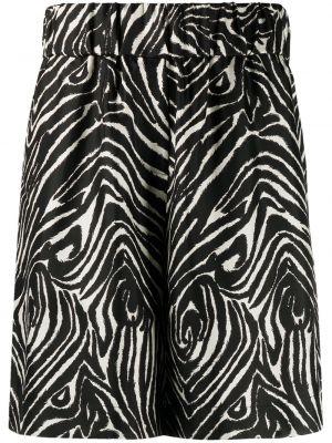 Черные с завышенной талией шорты с поясом Alberto Biani