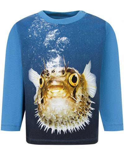 Синяя хлопковая футболка Molo