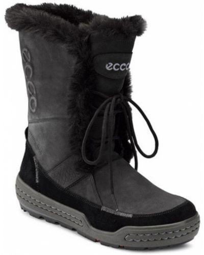 Полусапожки черные замшевые Ecco