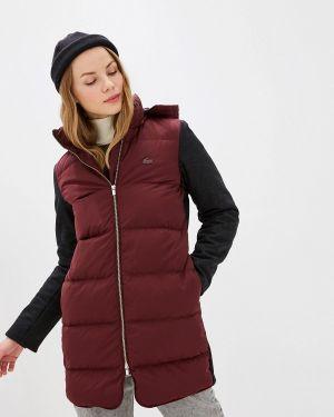 Зимняя куртка осенняя бордовый Lacoste