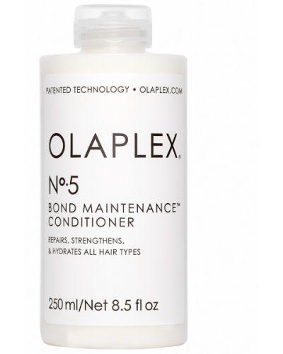 Bezpłatne cięcie biznes odżywka do włosów przezroczysty bezpłatne cięcie Olaplex