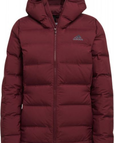 Зимняя куртка с капюшоном спортивная Adidas