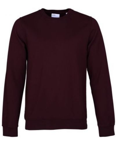 Czerwona bluza bawełniana Colorful Standard