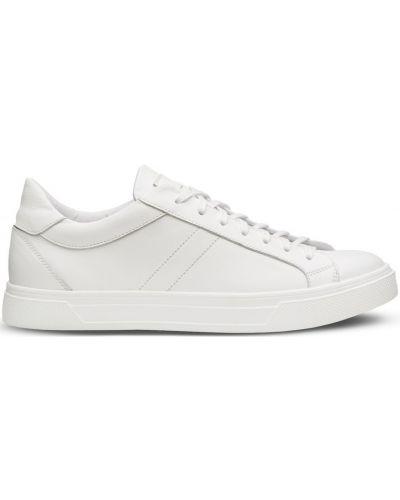 Кеды на шнуровке - белые Shamrock