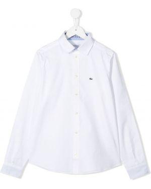 Рубашка на пуговицах белая Lacoste Kids