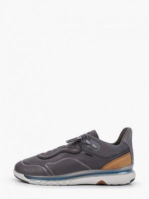 Низкие кроссовки - серые Geox