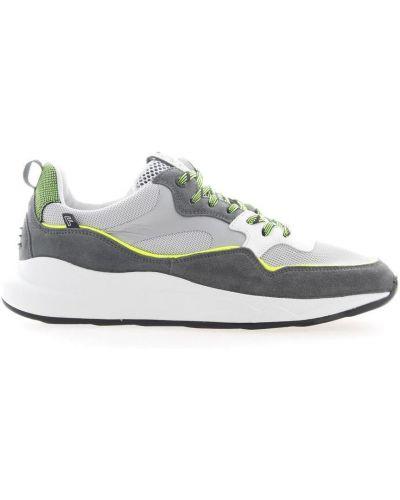 Szare sneakersy Floris Van Bommel
