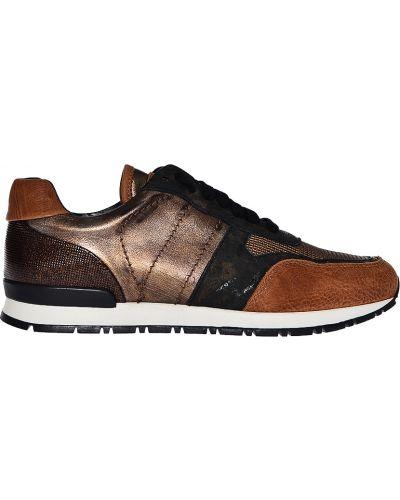 Кроссовки коричневый Stokton