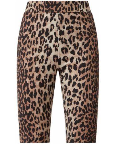 Brązowe spodnie bawełniane Catwalk Junkie