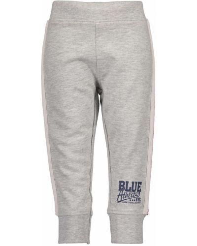 Spodnie szary niebieski Blue Seven