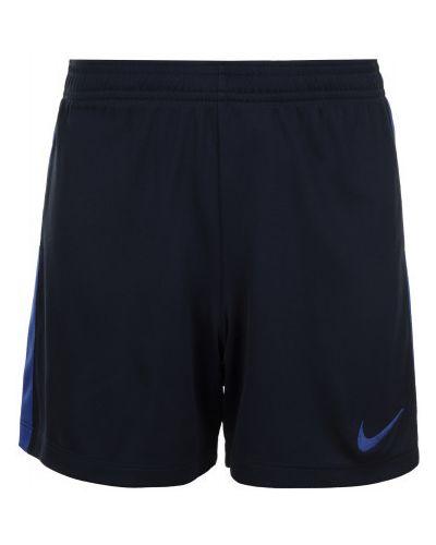 Синие шорты спортивные Nike