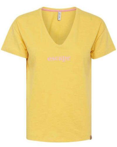 Желтая футболка с надписью с вырезом Blend