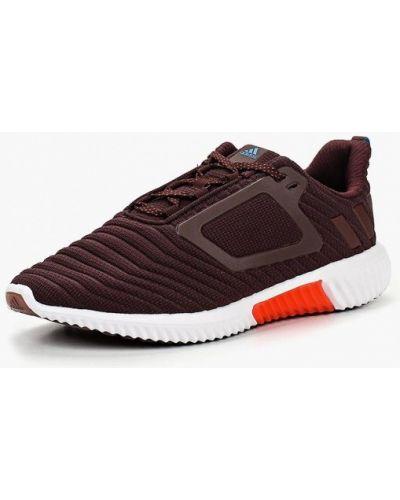 Кроссовки низкие Adidas