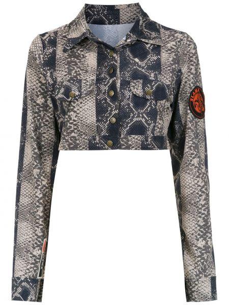 Длинная куртка черная леопардовая Amir Slama