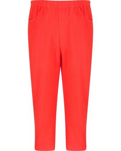 Оранжевые брюки Poivre Blanc