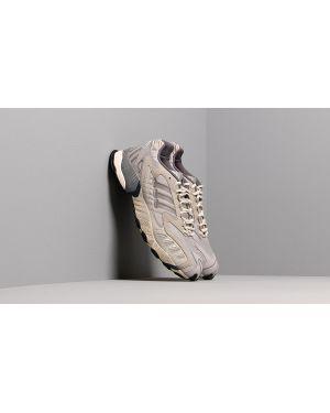 Brązowe półbuty Adidas Consortium