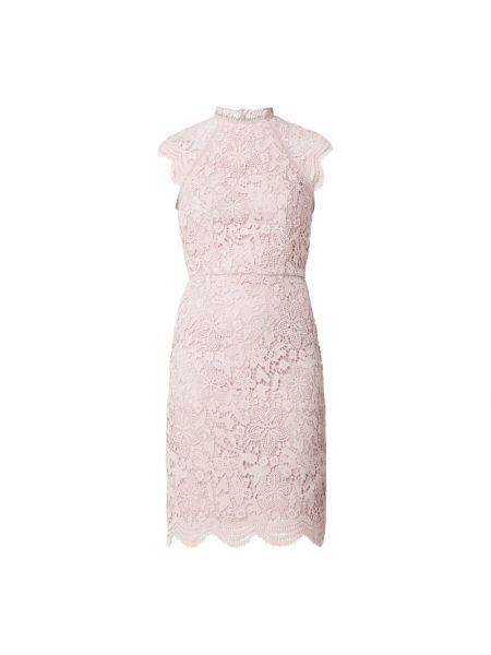 Sukienka koronkowa - różowa Chi Chi London