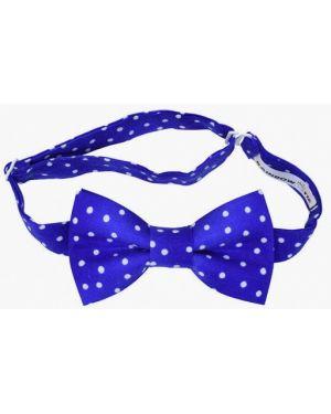 Синий галстук с бабочкой Rainbowtie