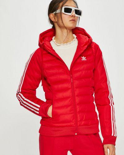 Стеганая куртка утепленная с капюшоном Adidas Originals