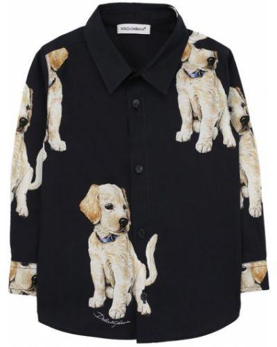 Рубашка хлопковая с принтом Dolce & Gabbana