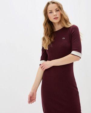 Платье бордовый вязаное Lacoste