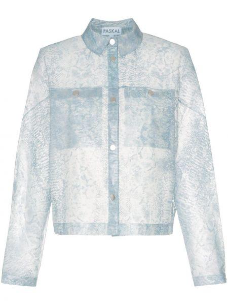 Классическая синяя куртка Paskal
