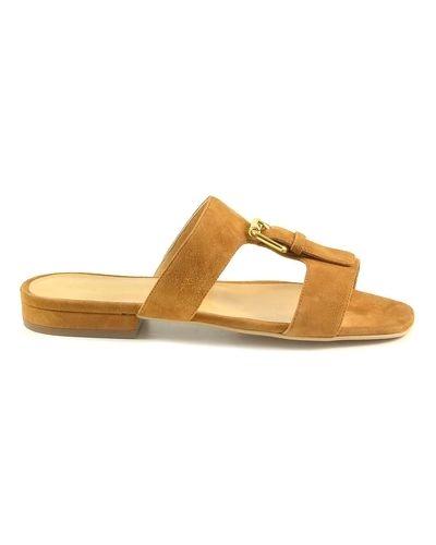 Brązowe sandały Sergio Rossi