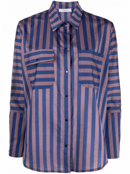 Хлопковая синяя классическая рубашка в полоску Roseanna