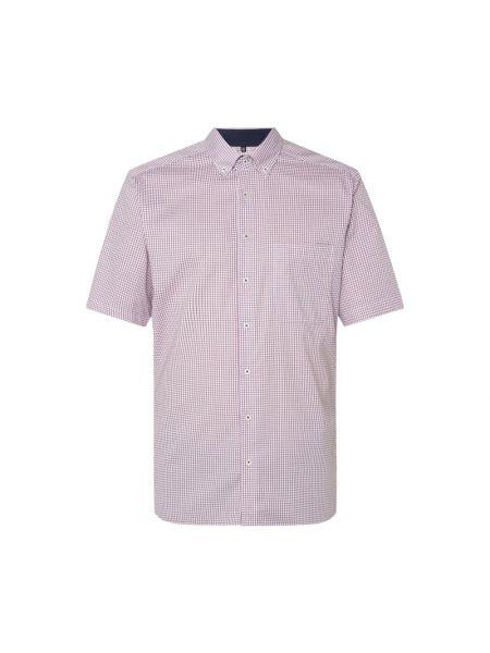 Koszula oxford w kratę bawełniana krótki rękaw Eterna